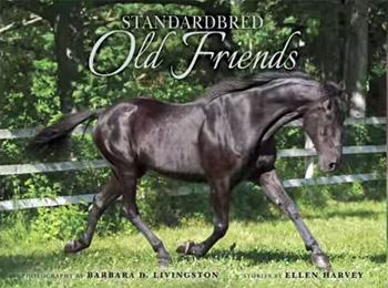 standardbred-old-friends