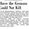 """Statue to honour heroic Warrior – """"the horse the Germans could not kill"""""""