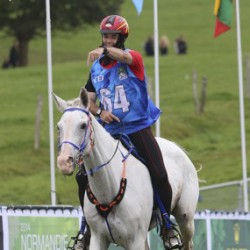 UAE wins WEG endurance gold; 136 in field eliminated