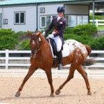 Shannon Dahmer and Lakota Lace, who won the Intermediaire I - Open at Dressage in the Rockies on Saturday.