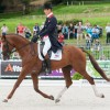 Early WEG eventing lead to GB's William Fox-Pitt