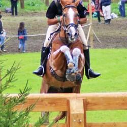 Equestrians a no-show for NZ sporting awards