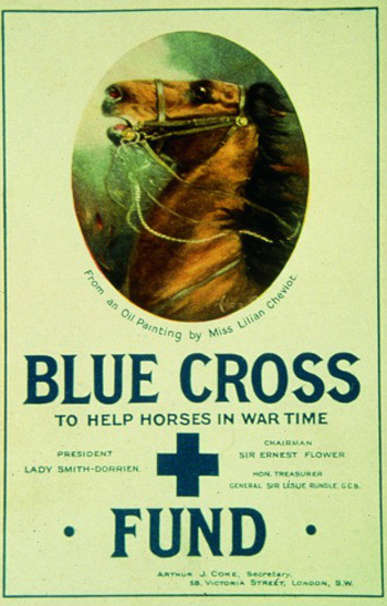 A promotional poster for The Blue Cross Fund