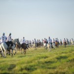 Revamped rules are now in force for endurance. © FEI