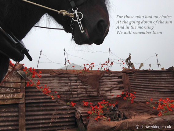 war-horse-poppies