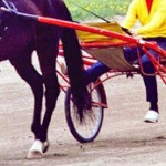 Pennsylvania imposes new whipping rules in harness racing