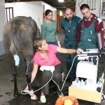 Sabrina Brounts, front, clinical associate professor of large animal surgery, uses ultrasound to gauge how well a Missouri Fox Trotter horse is healing. Also pictured, from left, are large animal specialty intern Jennifer Whyard and fourth-year students Ben Tegen and Daniel Kieler. Photo: Nik Hawkins