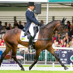 Burghley horse trials Happy Times for Sam Griffiths – so far