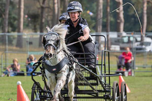 Kiwi wins gold at British Scurry World Champs