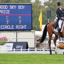 Jock Paget: Burghley cross-country must be respected