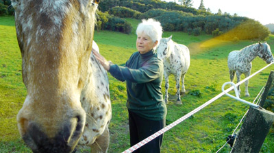 New Zealand foundation appaloosa breeder Scott Engstrom travelled to Kyrgyzstan seeking spotted horses.