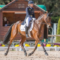 Seasoned pair share 4-star dressage lead at Pau