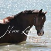 Horse Lore – the Traditional Wisdom of Equus