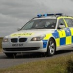 Police in bid to tackle animal-related motor accidents in England's New Forest