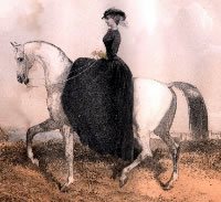 Traditional Riding Habit circa 1890