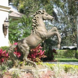 Slice of Florida equestrian luxury for sale