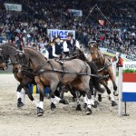 Reigning FEI World Cup Driving champion Boyd Exell won the first FEI World Cup Driving qualifier of the season held at the Stuttgart German Masters.