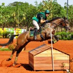 Brazil's Henrique Pinheiro and Land Quenote Do Feroleto won both individual and team gold at the weekend's FEI South American Eventing Championships at Barretos in Brazil.