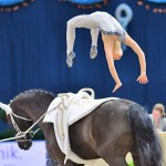 Lisa Wild performing her famous signature move, a backflip, from her horse Robin.