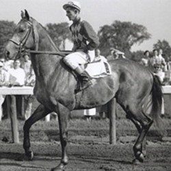 Legendary racehorse, sire Native Dancer honored
