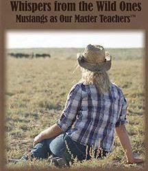 Wild horse 'whispering' DVD to aid US mustangs