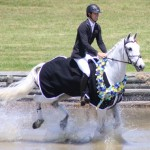 Clarke Johnstone makes another splash on Balmoral Sensation, this time on his victory lap.