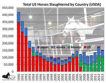 horses-slaughtered-by-country
