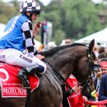 Ryan Moore on Protectionist after their Melbourne Cup victory last month.