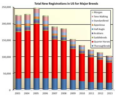 total-new-registrations