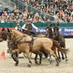 The Netherlands' Koos de Ronde and his four-in-hand on their way to victory in the last FEI World Cup Driving qualifier of the 2014/15 season.