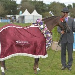 Royal Melbourne Horse Show 2015 Best of Show Champion Whitmere Lollipop. Owner and exhibitor Michelle Labahn takes home $1000 in prize money, a rug, sash garland and wins a watercolour portrait of Lollipop by artist Jason Roberts (valued at $1000).
