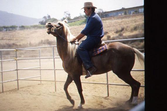 Good horse behaviour starts with your behaviour