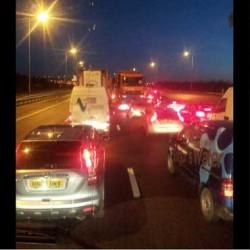 Loose horse causes four-mile traffic jam on British motorway