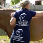 New leader sought for British Grooms Association
