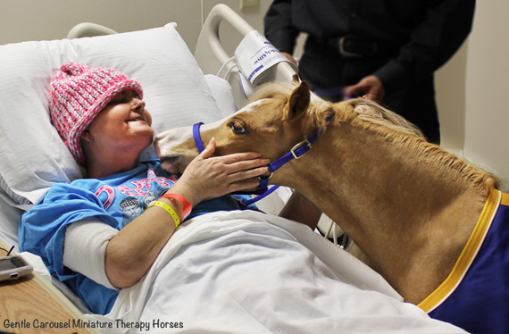 Hamlet shares the love during a hospital visit.