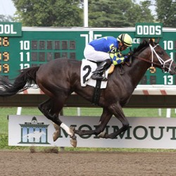 Owner's pledge prompts $150K for laminitis research