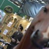 Equestrian retailers buy up large at trade show