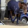 OTTB retraining scheme kicks off at British charity