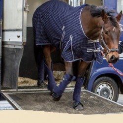 OTTB retraining scheme kicks off at British charity