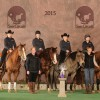 Second para-reining contest added to US series