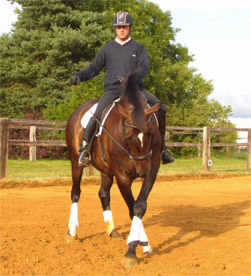 Rotating the shoulders around the inside hind