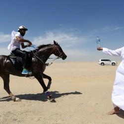 Qatari rider wins 120km Al Shaqab race