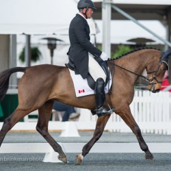 Rotational fall claims life of eventer Conahy's Courage