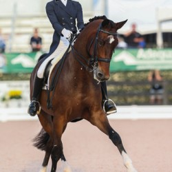 US claims Nations Cup dressage spoils in Florida