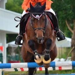World Cup jumping finalists await Vegas call-up