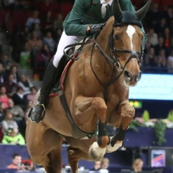 Steve Guerdat may leave Nino at home for World Cup final