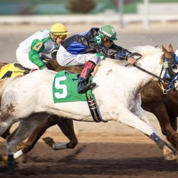 Kentucky to welcome paint horse racing