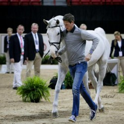 All World Cup horses pass first inspection