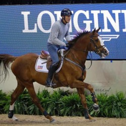 World Cup warmup: leading horses strut their stuff