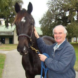 New role for equine colic specialist